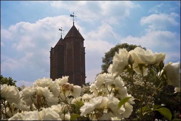 July 2013 - Sissinghurst 4